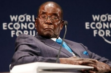 Lawyer says establishing Mugabe's assets will take a long time