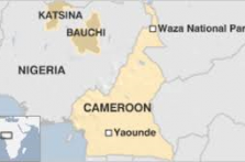 Cameroon military says 30 separatists killed in fighting